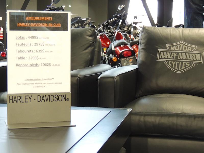 Harley 800 7
