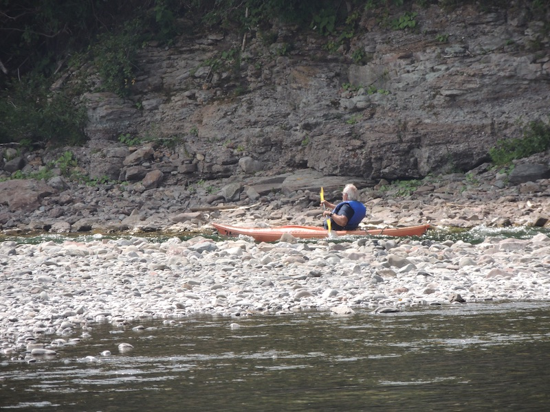 Kayak 800 5