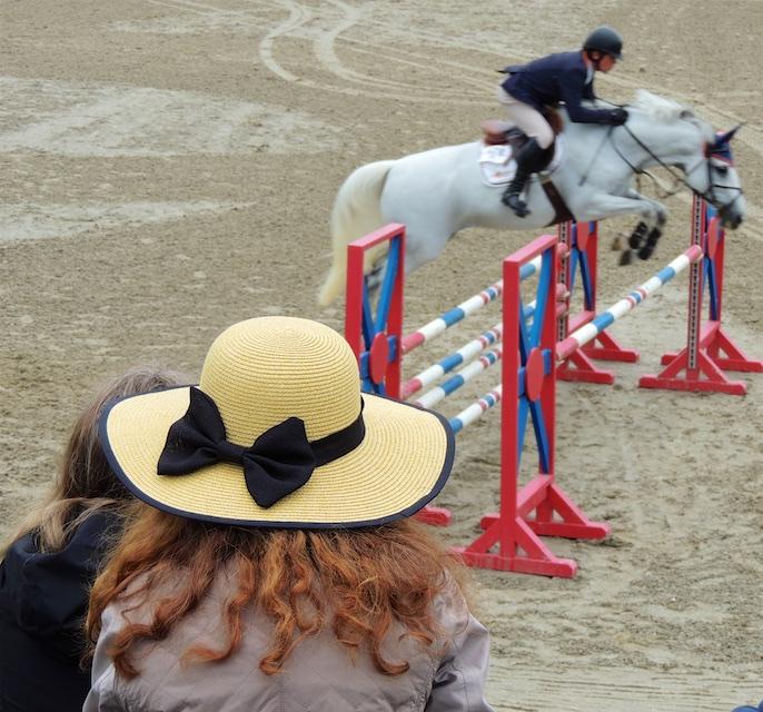 Equestre 80013