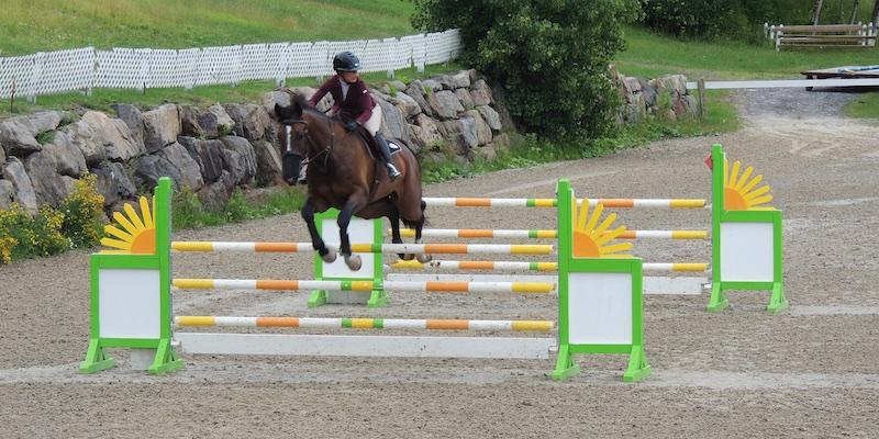 Equestre 80014