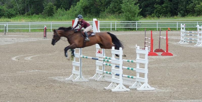 Equestre 80015