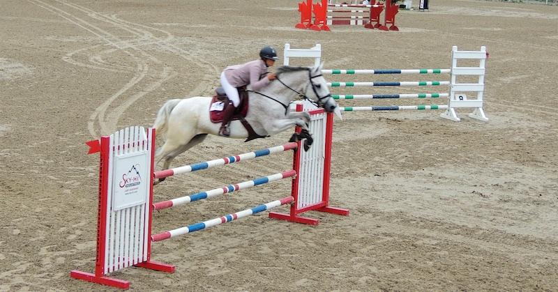 Equestre 8005 (1)